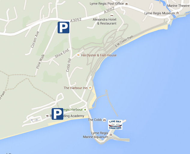 Parking - for Lyme Bay charters - Lyme Regis Fishing Trips